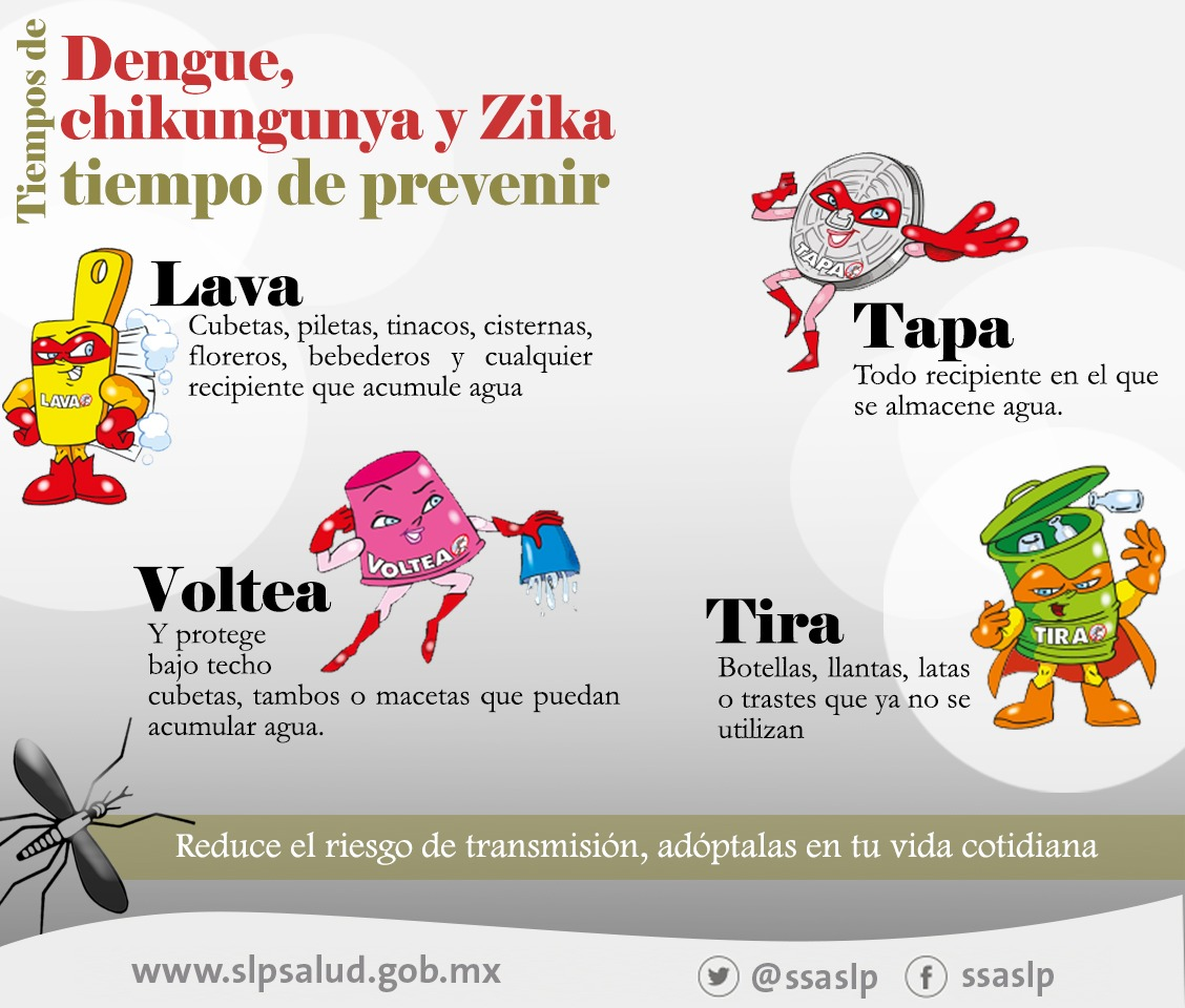 EMITE SECRETARÍA DE SALUD MEDIDAS DE PREVENCIÓN PARA EVITAR  DENGUE, CHIKUNGUNYA Y ZIKA.
